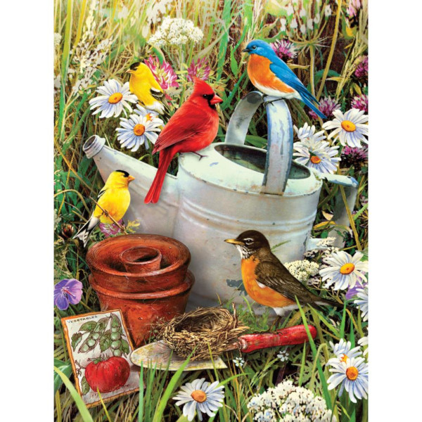 Garden Birds Paint by Number